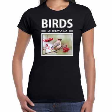 Pestvogel foto t-shirt zwart voor dames - birds of the world cadeau shirt pestvogels liefhebber kopen