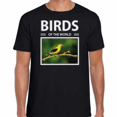 Wielewaal foto t-shirt zwart voor heren - birds of the world cadeau shirt wielewaal vogels liefhebber kopen