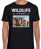 Alpaca foto t-shirt zwart voor heren wildlife of the world cadeau shirt alpaca s liefhebber kopen