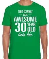 Awesome 30 year verjaardag cadeau t-shirt groen voor heren kopen