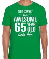 Awesome 65 year verjaardag cadeau t-shirt groen voor heren kopen