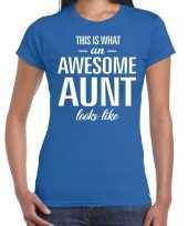 Awesome aunt cadeau t-shirt blauw voor dames kopen