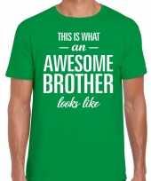 Awesome brother fun t-shirt groen voor heren kopen