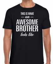Awesome brother fun t-shirt zwart voor heren kopen