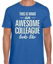 Awesome colleague fun t-shirt blauw voor heren kopen