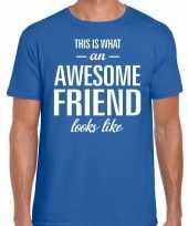 Awesome friend kado t-shirt blauw voor heren kopen