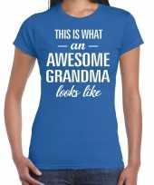 Awesome grandma cadeau t-shirt blauw voor dames kopen
