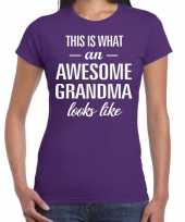 Awesome grandma cadeau t-shirt paars voor dames kopen