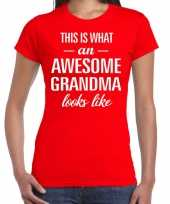 Awesome grandma cadeau t-shirt rood voor dames kopen