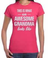 Awesome grandma cadeau t-shirt roze voor dames kopen