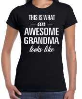 Awesome grandma cadeau t-shirt zwart voor dames kopen