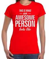Awesome person cadeau t-shirt rood voor dames kopen