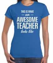 Awesome teacher cadeau juffendag t-shirt blauw voor dames kopen