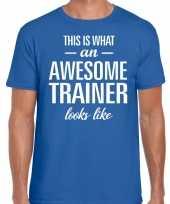 Awesome trainer fun t-shirt blauw voor heren bedankt cadeau voor een trainer kopen