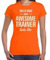 Awesome trainer kado t-shirt oranje voor dames kopen