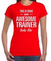 Awesome trainer kado t-shirt rood voor dames kopen