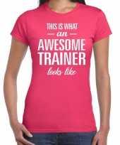 Awesome trainer kado t-shirt roze voor dames kopen