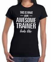 Awesome trainer kado t-shirt zwart voor dames kopen