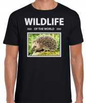 Egel foto t-shirt zwart voor heren wildlife of the world cadeau shirt egels liefhebber kopen