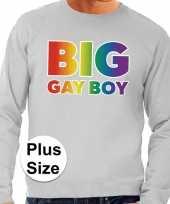 Gaypride big gay boy regenboog sweater grijs heren kopen
