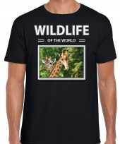 Giraf foto t-shirt zwart voor heren wildlife of the world cadeau shirt giraffen liefhebber kopen