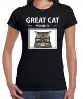 Grijze kat foto t-shirt zwart voor dames great cat moments cadeau shirt katten liefhebber kopen