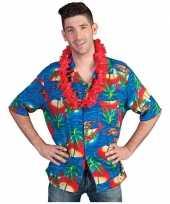 Hawaii shirt maui kopen