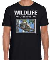 Koala foto t-shirt zwart voor heren wildlife of the world cadeau shirt koalas liefhebber kopen 10264299