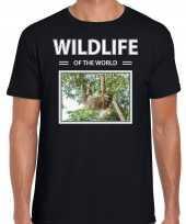 Luiaard foto t-shirt zwart voor heren wildlife of the world cadeau shirt luiaarden liefhebber kopen
