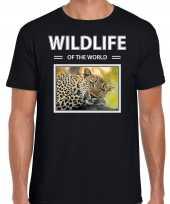 Luipaard foto t-shirt zwart voor heren wildlife of the world cadeau shirt luipaarden liefhebber kopen