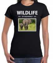 Olifant foto t-shirt zwart voor dames wildlife of the world cadeau shirt olifanten liefhebber kopen
