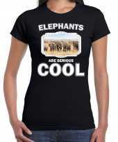 T shirt elephants are serious cool zwart dames kudde olifanten olifant-shirt kopen