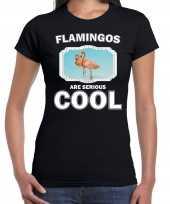 T shirt flamingos are serious cool zwart dames flamingo vogels flamingo shirt kopen
