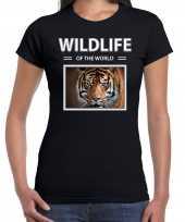 Tijger foto t-shirt zwart voor dames wildlife of the world cadeau shirt tijgers liefhebber kopen
