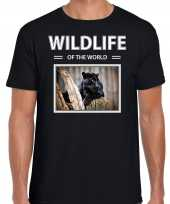 Zwarte panter foto t-shirt zwart voor heren wildlife of the world cadeau shirt panters liefhebber kopen